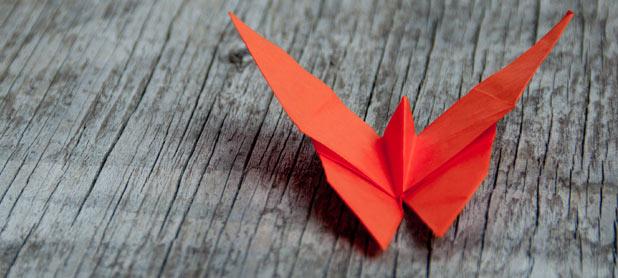 papillon-aidant/aidé
